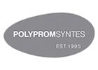 Поліпромсинтез